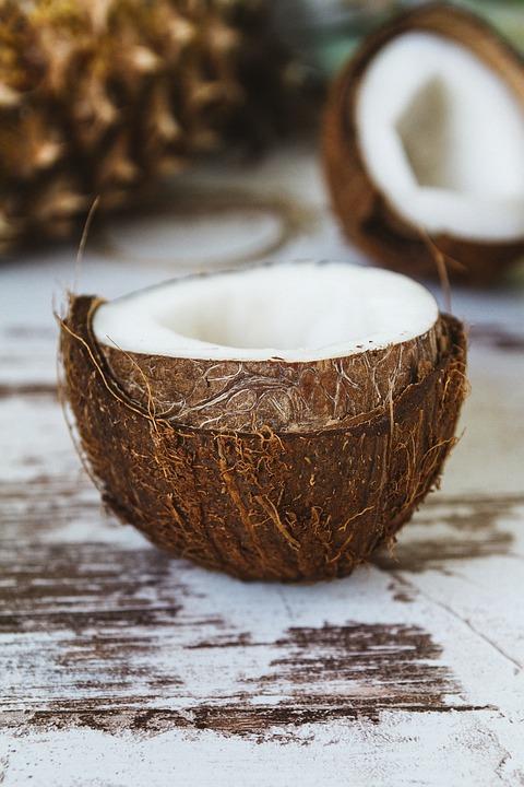 coconut-2592257_960_720